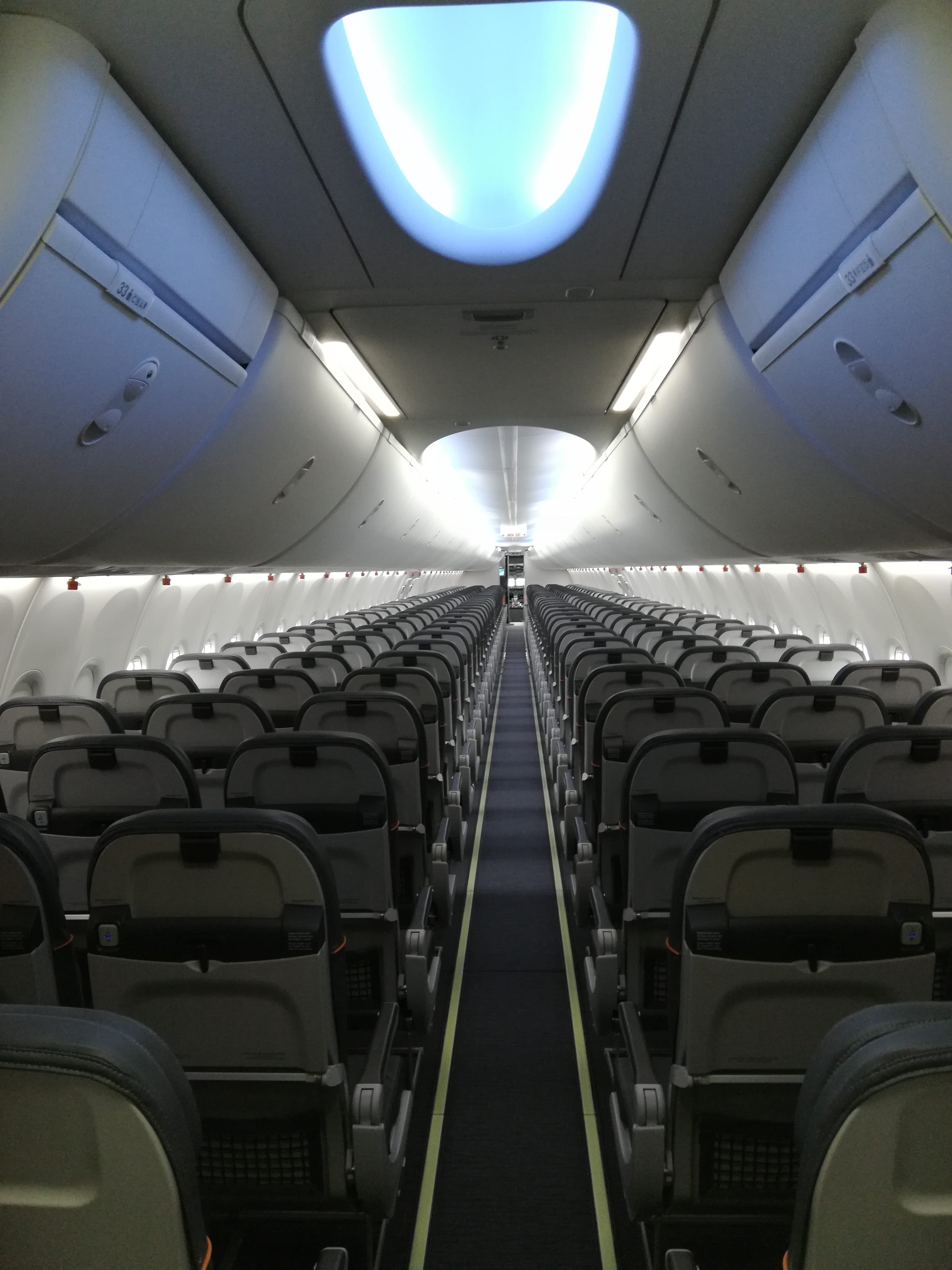 Interior do novo 737 MAX da Gol terá compartimentos maiores para bagagem de mão (Foto: Divulgação)
